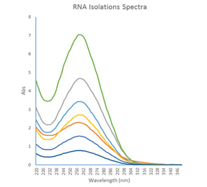Minimal Protein Contamination with RNA Isolation Kit